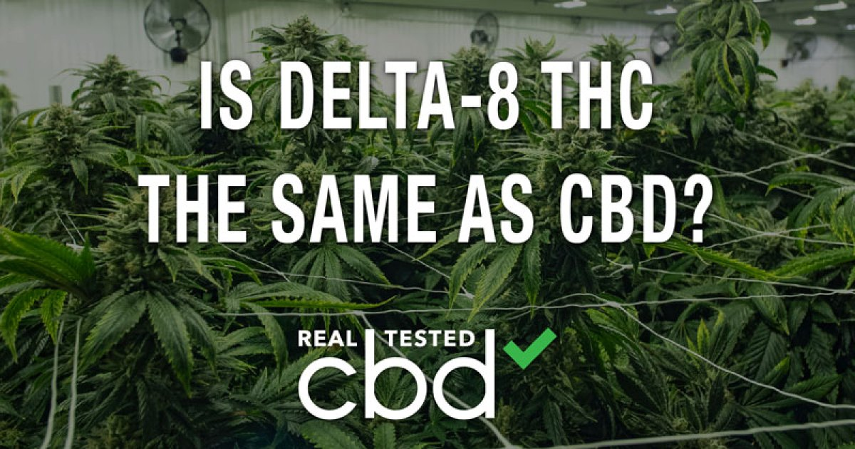 Is Delta-8 the same as CBD?