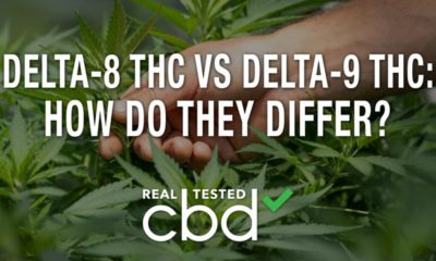 Delta-8 THC vs Delta-9 THC: How Are They Different?