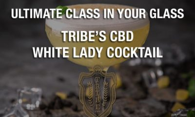 Ultimate class in your glass - Tribes CBD White Lady Cocktail