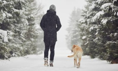 Trails across Canada for city dwellers who can hike this winter