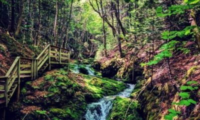 #CanadaGem: The best - and absolutely breathtaking - hiking trails in Canada